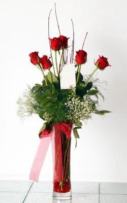 Çankırı çiçek , çiçekçi , çiçekçilik  6 adet kirmizi gül ve cam yada mika vazo