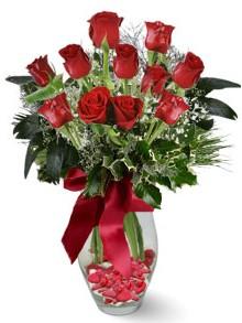 9 adet gül  Çankırı İnternetten çiçek siparişi  kirmizi gül
