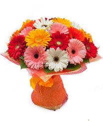 Renkli gerbera buketi  Çankırı çiçekçi mağazası