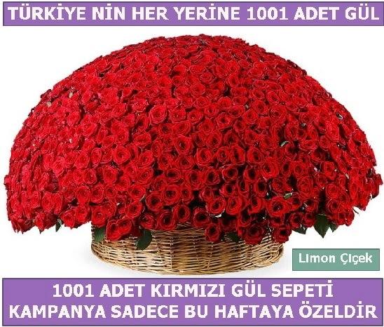 1001 Adet kırmızı gül Bu haftaya özel  Çankırı 14 şubat sevgililer günü çiçek