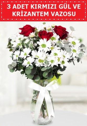3 kırmızı gül ve camda krizantem çiçekleri  Çankırı çiçek online çiçek siparişi