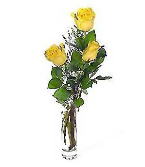 Çankırı çiçek yolla  3 adet kalite cam yada mika vazo gül