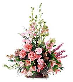 Çankırı güvenli kaliteli hızlı çiçek  mevsim çiçeklerinden özel