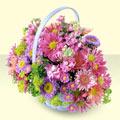 Çankırı cicek , cicekci  bir sepet dolusu kir çiçegi  Çankırı anneler günü çiçek yolla