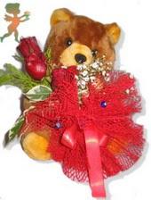 oyuncak ayi ve gül tanzim  Çankırı çiçek gönderme sitemiz güvenlidir