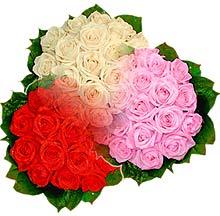 3 renkte gül seven sever   Çankırı kaliteli taze ve ucuz çiçekler