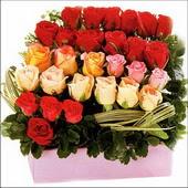 15 adet renkli gül ve cam   Çankırı online çiçekçi , çiçek siparişi