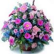 karisik mevsim kir çiçekleri  Çankırı anneler günü çiçek yolla
