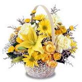 sadece sari çiçek sepeti   Çankırı anneler günü çiçek yolla