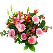 lilyum ve gerbera çiçekleri - çiçek seçimi -  Çankırı çiçek online çiçek siparişi