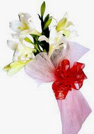 Çankırı kaliteli taze ve ucuz çiçekler  ince vazoda gerbera ve ayi