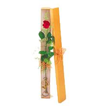 ince  kutuda  1  gül   Çankırı hediye sevgilime hediye çiçek