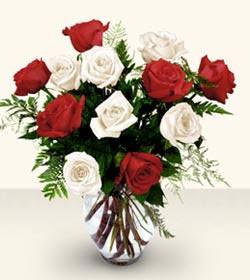 Çankırı ucuz çiçek gönder  6 adet kirmizi 6 adet beyaz gül cam içerisinde