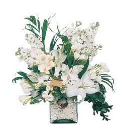 Çankırı çiçek yolla  sadece beyazlardan olusmus mevsim cam yada mika tanzim