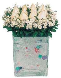 Çankırı online çiçekçi , çiçek siparişi  7 adet beyaz gül cam yada mika vazo tanzim