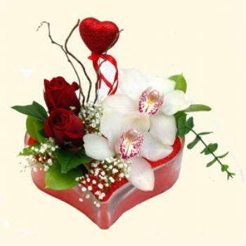Çankırı çiçek siparişi sitesi  1 kandil orkide 5 adet kirmizi gül mika kalp