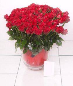 Çankırı çiçek satışı  101 adet kirmizi gül