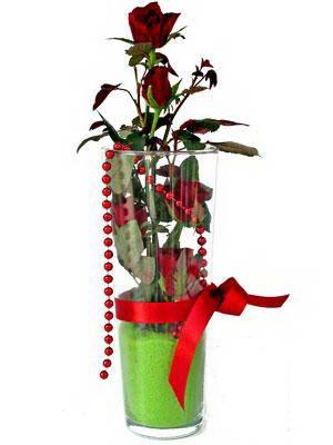 Çankırı çiçekçi telefonları  Cam yada mika içerisinde 9 adet kirmizi gül - sevdiklerinize özel