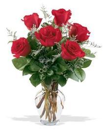 Çankırı anneler günü çiçek yolla  7 adet kirmizi gül cam yada mika vazoda sevenlere