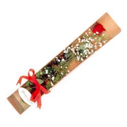 Çankırı kaliteli taze ve ucuz çiçekler  Kutuda tek 1 adet kirmizi gül çiçegi
