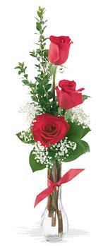 Çankırı çiçek , çiçekçi , çiçekçilik  mika yada cam vazoda 3 adet kirmizi gül