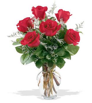 Çankırı çiçek , çiçekçi , çiçekçilik  cam yada mika vazoda 6 adet kirmizi gül