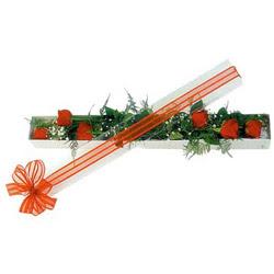 Çankırı çiçek yolla , çiçek gönder , çiçekçi   6 adet kirmizi gül kutu içerisinde