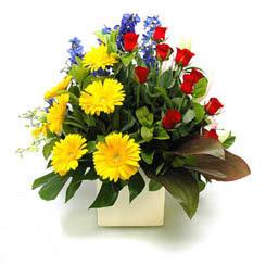 Çankırı çiçekçi telefonları  9 adet gül ve kir çiçekleri cam yada mika vazoda