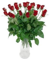 Çankırı çiçek servisi , çiçekçi adresleri  11 adet kimizi gülün ihtisami cam yada mika vazo modeli