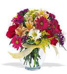 Çankırı kaliteli taze ve ucuz çiçekler  cam yada mika vazo içerisinde karisik kir çiçekleri