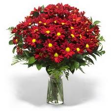 Çankırı hediye sevgilime hediye çiçek  Kir çiçekleri cam yada mika vazo içinde