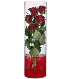 cam içerisinde 7 adet kirmizi gül  Çankırı çiçek gönderme sitemiz güvenlidir