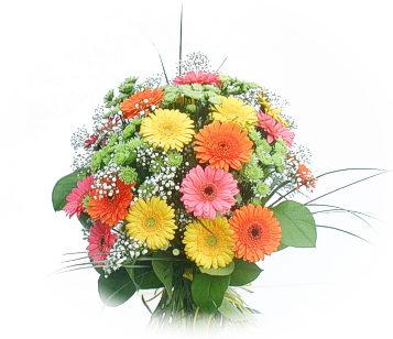 13 adet gerbera çiçegi buketi  Çankırı çiçekçi telefonları