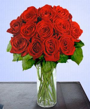 Anneme 12 adet cam içerisinde kirmizi gül  Çankırı çiçek yolla , çiçek gönder , çiçekçi