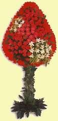 Çankırı çiçek online çiçek siparişi  dügün açilis çiçekleri  Çankırı internetten çiçek satışı