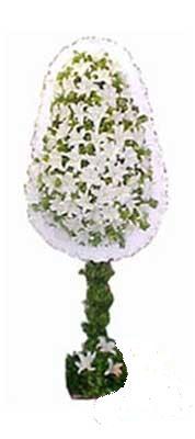 Çankırı çiçek yolla , çiçek gönder , çiçekçi   nikah , dügün , açilis çiçek modeli  Çankırı çiçekçi telefonları
