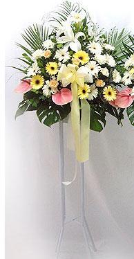 Çankırı çiçekçi telefonları   perförje çiçegi dügün çiçekleri