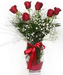 7 adet gülden cam içerisinde güller  Çankırı hediye çiçek yolla