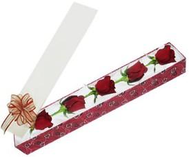 Çankırı İnternetten çiçek siparişi  kutu içerisinde 5 adet kirmizi gül