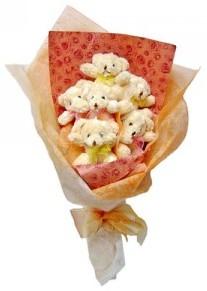 12 adet ayiciktan buket  Çankırı çiçek yolla , çiçek gönder , çiçekçi