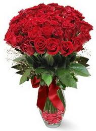 19 adet essiz kalitede kirmizi gül  Çankırı hediye çiçek yolla