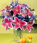 Çankırı internetten çiçek siparişi  Sevgi bahçesi Özel  bir tercih