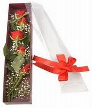 kutu içinde 5 adet kirmizi gül  Çankırı çiçek yolla