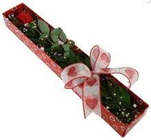 Tek kirmizi gül kutu içerisinde  Çankırı online çiçek gönderme sipariş