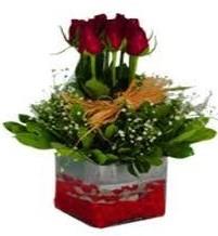 Çankırı çiçek online çiçek siparişi  7 adet mika yada cam vazoda gül tanzimi