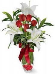 Çankırı çiçek gönderme  5 adet kirmizi gül ve 3 kandil kazablanka
