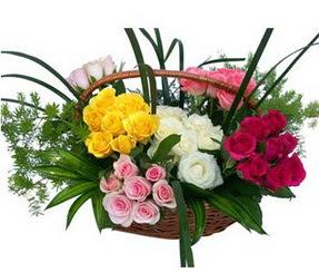 Çankırı güvenli kaliteli hızlı çiçek  35 adet rengarenk güllerden sepet tanzimi