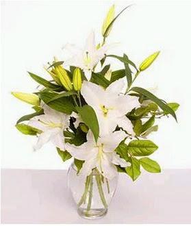Çankırı çiçek online çiçek siparişi  2 dal cazablanca vazo çiçeği
