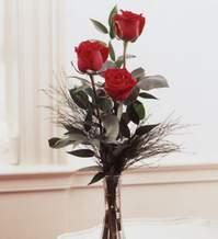 Çankırı İnternetten çiçek siparişi  Vazoda 3 adet güzel gül