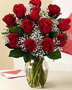 Sevgilime hediye 9 adet 1.ci kalite gül  Çankırı çiçekçi mağazası